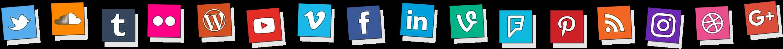 SSA Social Icons